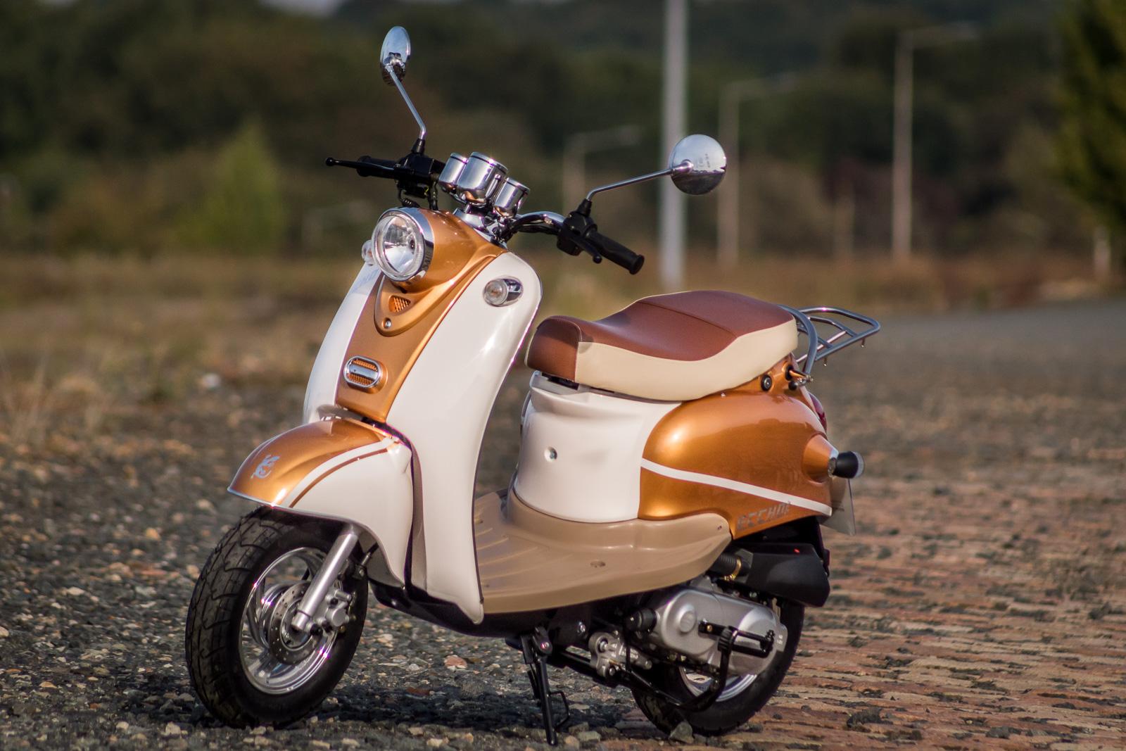 scooter yy50qt15 golder scooters eccho cholet acheter. Black Bedroom Furniture Sets. Home Design Ideas