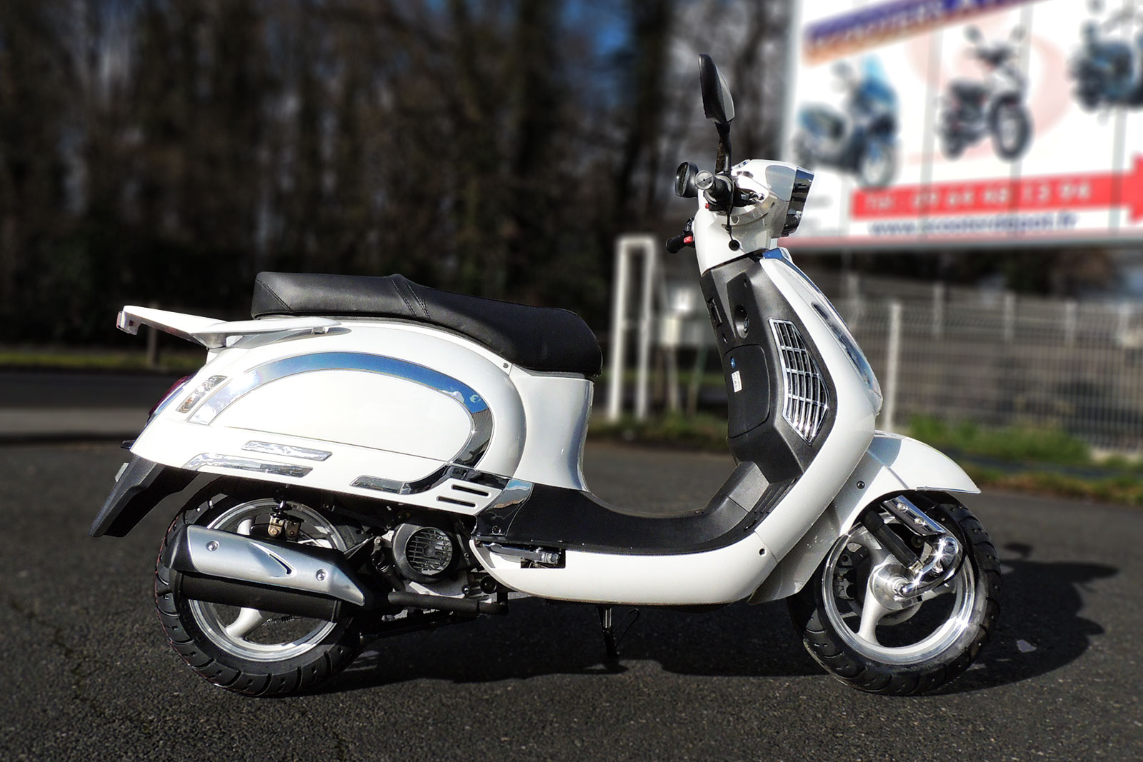 SCOOTER-50-ECCHO-EAGLE-WING-03